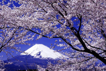 Day Trip To Yamanashi Prefecture...