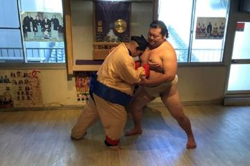 Skriv inn Sumo Wrestling World
