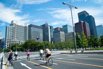 Half-Day Tokyo Cycling Tour with an English-Speaking Professional Guide
