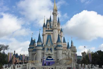 Guia particular no Walt Disney World