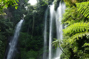 Private Tour: Sekumpul Waterfalls...