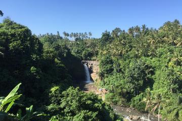 Tegenungan Waterfalls Hiking Tour