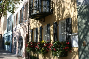 Book Charleston's Most Beautiful Walk on Viator