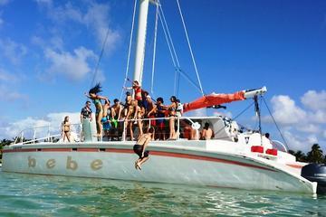 Crucero de medio día en catamarán y buceo de superficie desde Punta...