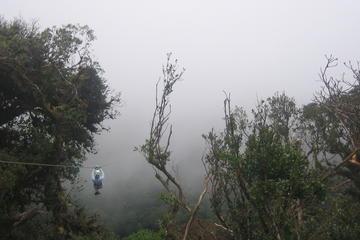 Zipline Hanging Bridges and Nature Exhibits Combo Tour in Monteverde...