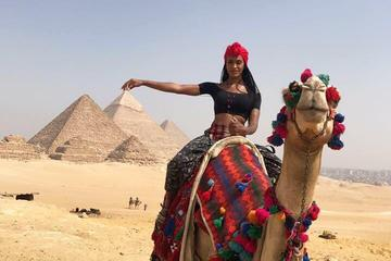 Private tour 3 days 2 nights Cairo Luxor and Aswan by Round flight...