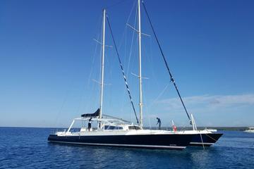 Private Punta Cana Catamaran Cruise to Saona Island