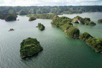 Punta Cana Ökologische Tour zum Los Haitises Nationalpark