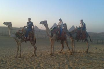 1 Hour Camel ride trip at Giza Pyramids