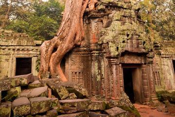 Angkor: Where Nature Meets History