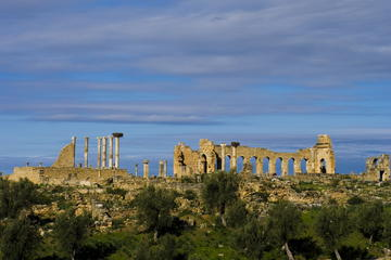 Private Day Tour from Fes to Volubilis, Morocco