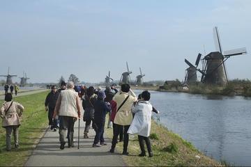 Excursão turística particular de 6 horas em Rotterdam Kinderdijk