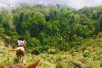 Horseback Ride to the Forgotten Jungle City
