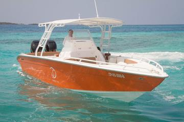 Private Island Hopping Tour to Rosario Islands on a 34ft Speedboat