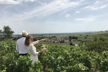 Small-Group Day Tour from Beaune including Tastings at two producers and Lunch