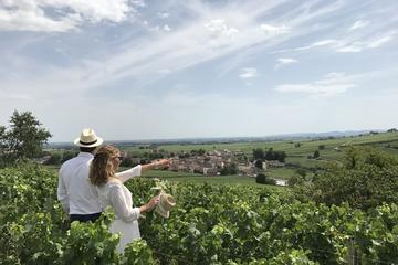 Small-Group Day Tour from Dijon to Beaune including Two Producers and Lunch