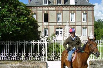 Excursión privada: sementales purasangre en Normandía con paseo a...
