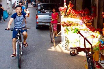 Excursão Cultural de Bicicleta Siam...