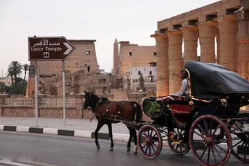 Private Luxor horse carriage tour from Luxor