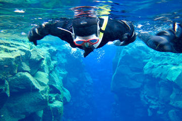 Snorkeling Tours from Safaga Port