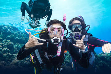 PADI Beginner Diving Course in Grand...