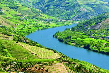 Douro-Tal inklusive Mittagessen und Weinprobe - Tagesausflug in...