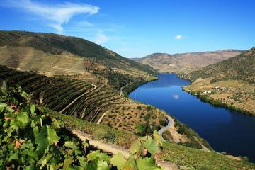 Excursión para grupos pequeños por Douro Vinhateiro con cata de vinos...