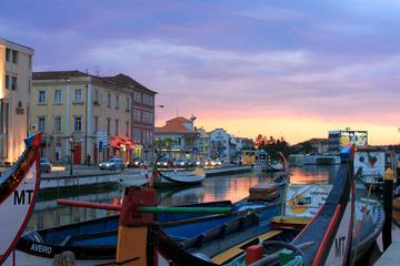 Private Tour: Aveiro und Ílhavo ab Porto