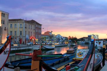 Private Tour of Aveiro from Porto