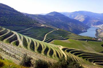 Viagem de dia inteiro no Vale do Douro com almoço, visita a uma...