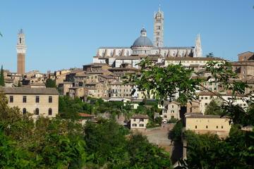 Tour a piedi della Siena classica