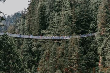 Private Tour to Capilano Bridge and...
