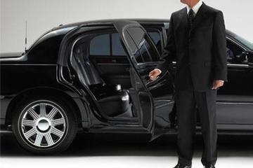 Private Arrival Transfer from Adnan Menderes Airport to Izmir City...