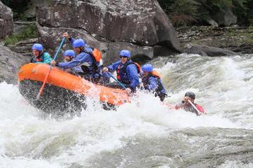Viagem de rafting no rio Gauley no...