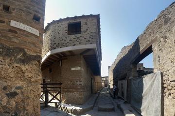 Half-Day Ancient Pompeii Tour from Amalfi Coast