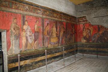 Pompeii and Villa Dei Misteri Ruin Tour