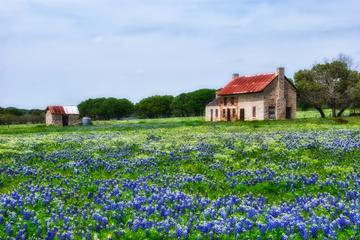 Texas Hill Country and LBJ Tour From...