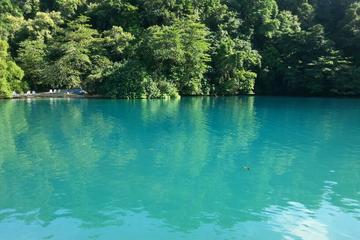 Port Antonio Full-Day Sightseeing Tour from Ocho Rios