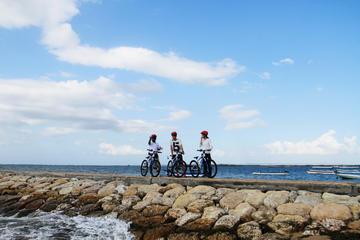サヌール ビレッジ自転車ツアー&シーウォーカー体験