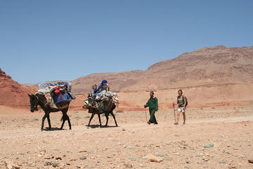 A Itinerant Hiking Trip of 5 Days with Accommodation among Nomads