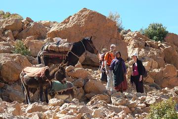Recorrido a pie de un día en el Alto Atlas entre los nómadas