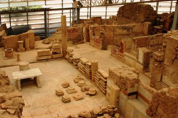 Private Tour of Ephesus and Terrace Houses From Port of Kusadasi with...