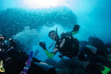 7 Days Diving and Hiking on the Galapagos Islands