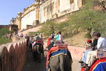 Private Jaipur City Highlights Tour with a visit to The Amber Fort...