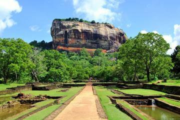 Full-Day Tour of Sigiriya Rock Fortress and Dambulla Cave Temples by...