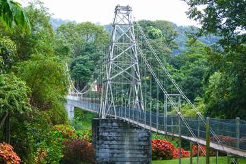 Visite privée de la ville de Kandy comprenant le jardin botanique de...