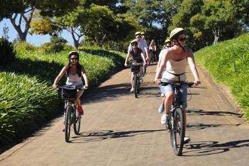 Constantia Wine Valley Bike Tour in...