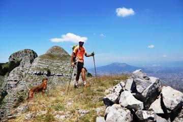 Promenez-vous autour de la montagne Faito, le plus haut point de la...