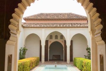 Excursión privada de día completo a Málaga desde Marbella