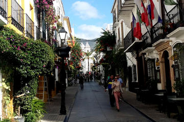 Marbella Private Half-Day Tour from...